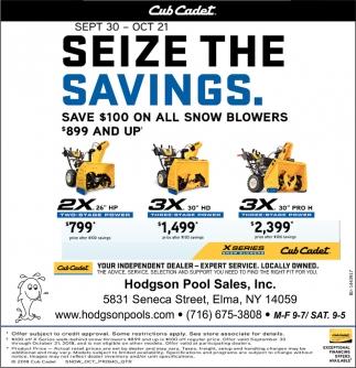 Seize The Savings
