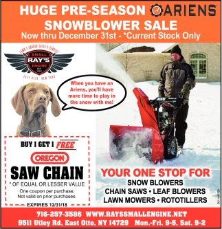 Huge Pre-Season Ariens Snowblower Sale
