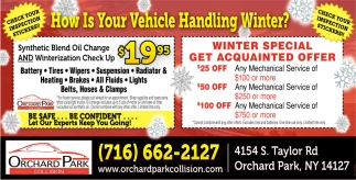 How Is Your Vehicle Handling Winter?