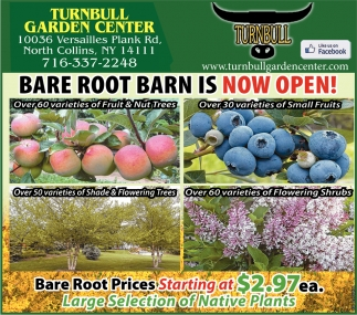Bare Root barn Is Now Open!