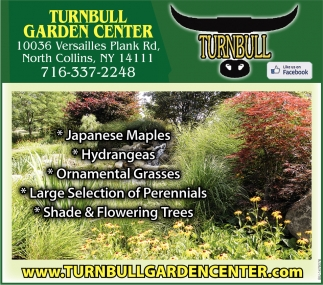 Japanese Maples - Hydrangeas - Ornamental Grasses