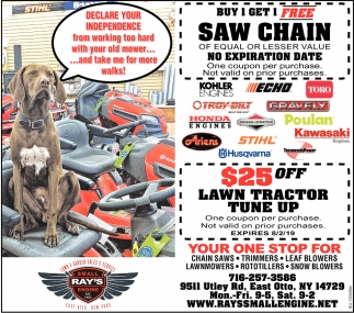 Buy 1 Get 1 Free Saw Chain