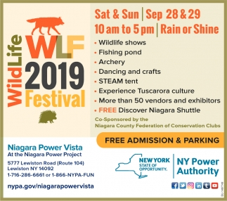 Wildlife WLF 2019 Festival