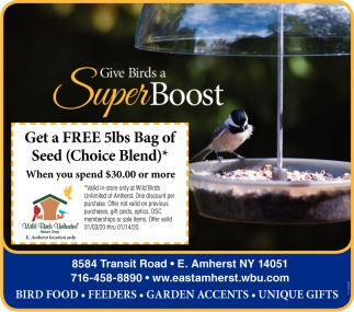 Give Birds A Super Boost